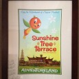 My framed Sunshine Tree Terrace poster, signed by @43SquareMiles (Jason Grandt)
